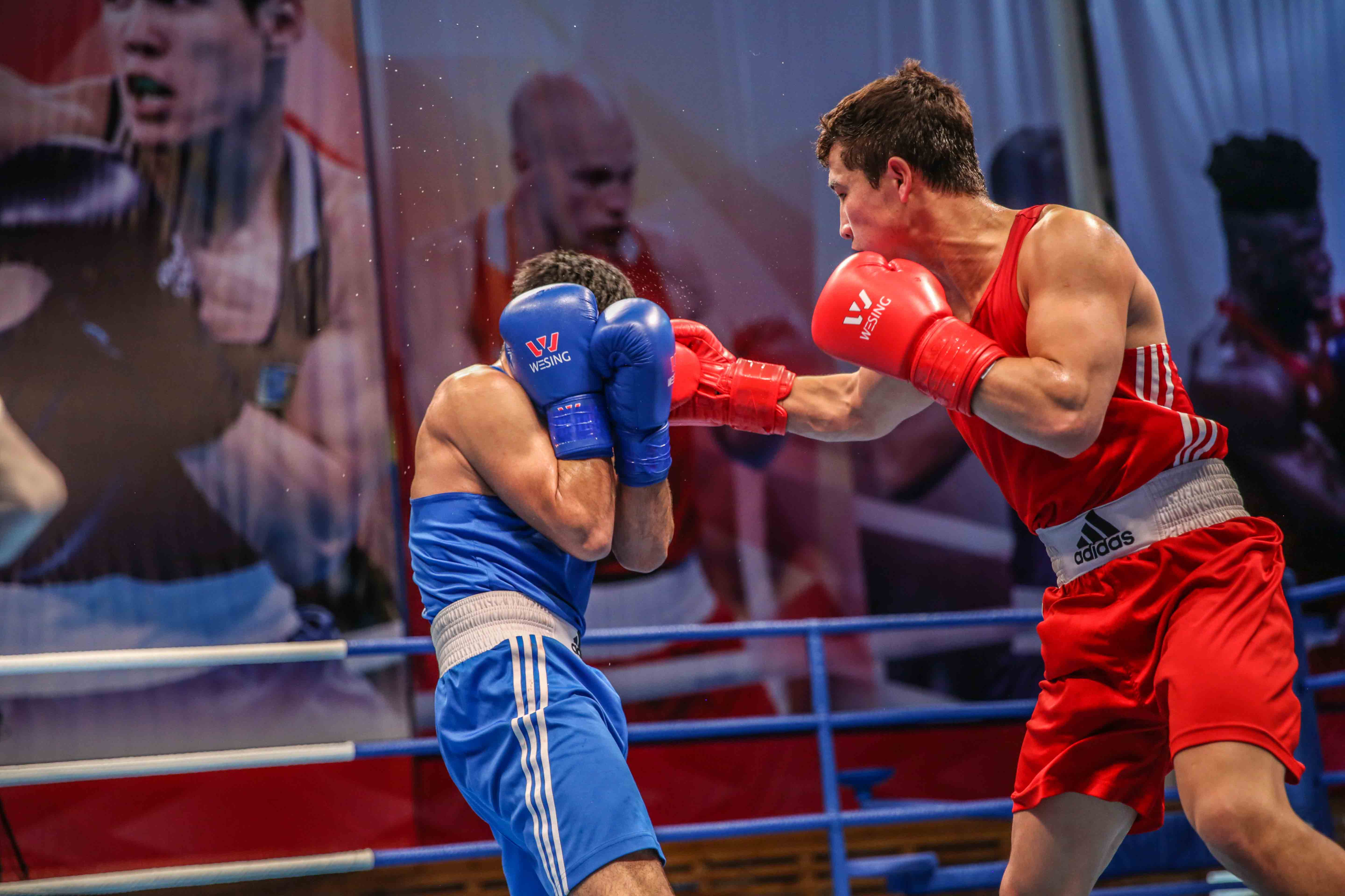 20 nations are remained in actions with at least one boxer in Asian Confederation Boxing Championship