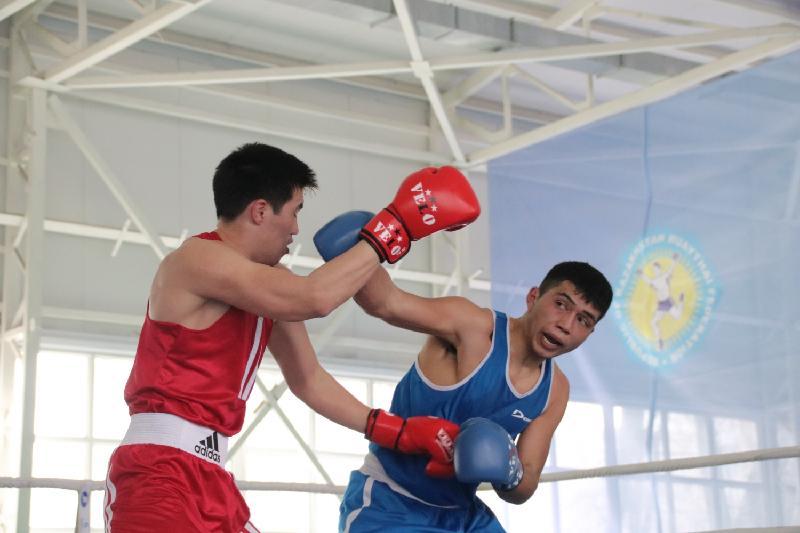 Определились лучшие боксеры Алматы